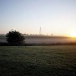 Morning Walks 4